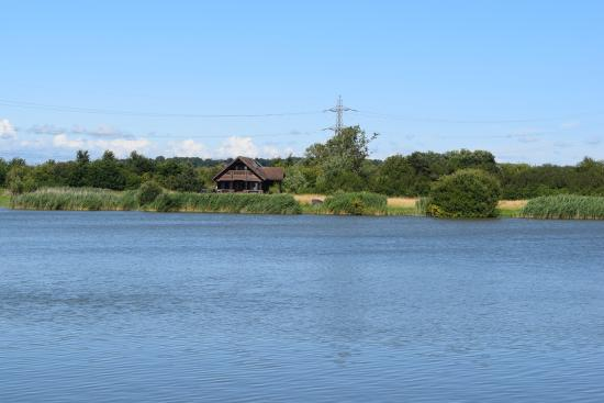 Chilton Trinity, UK: Lower Lakes