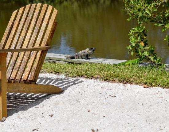 Ambergris Lake Villas: More Neighbors