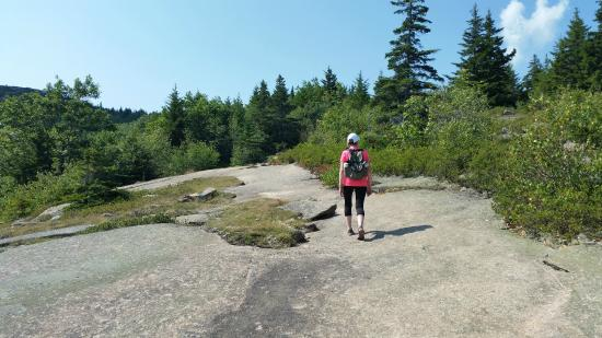 cadillac mountain north ridge trail - picture of cadillac mountain