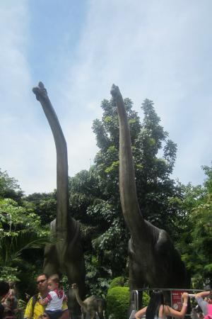 Parque Explora: Part of the dinasour exhibition