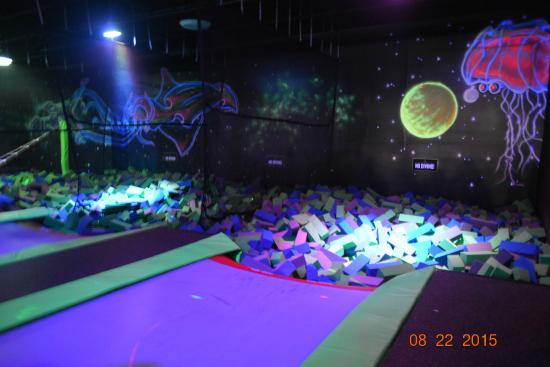 Trampoline area - Picture of Velocity Air Sports, North Charleston ...