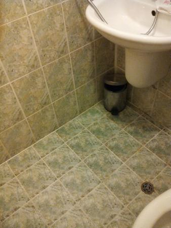 Slavyanski Hotel: slippy wetroom floor