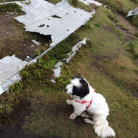 Trevelyan Guest house: Aeroplane crash wreckage on the Bleaklow to Snake Pass site.