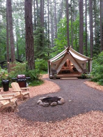 PAMPERED WILDERNESS - Updated 2019 Campground Reviews (Olympia, WA