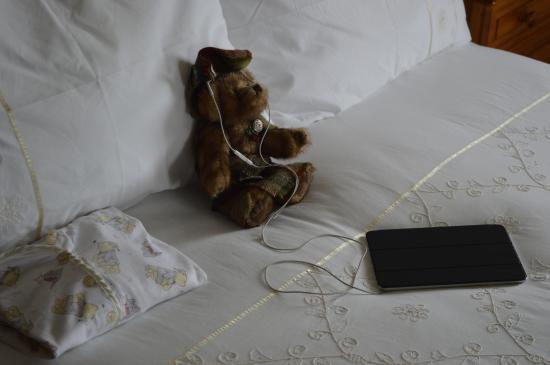 Brockville Bed and Breakfast : Crazy bear