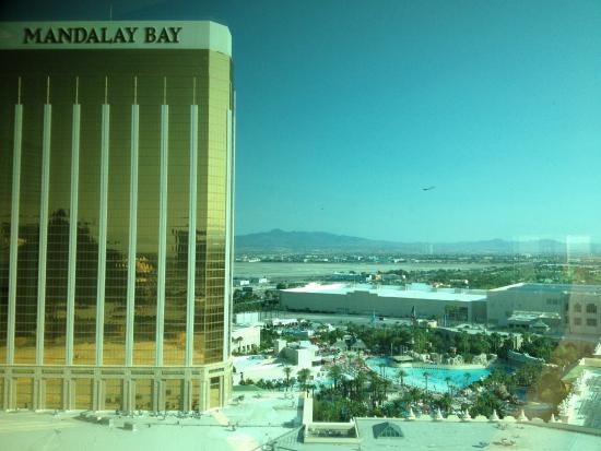 Delano Las Vegas: Pool view from room