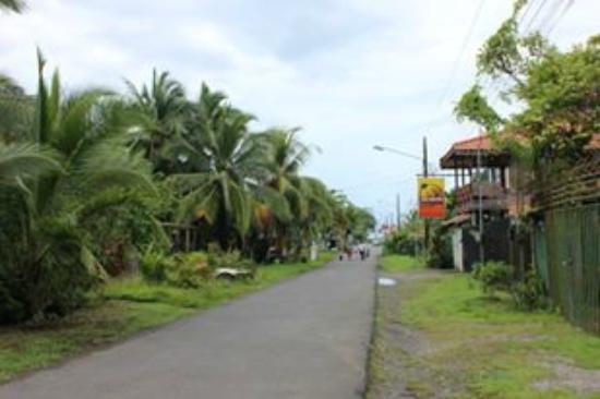 Jacaranda Hotel and Jungle Garden: Vista Salida de Hotel