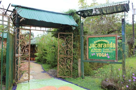 Jacaranda Hotel and Jungle Garden: Entrada a Jacarandá