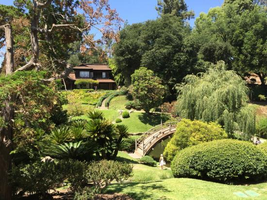 Japanese garden, Huntington Library - Picture of The Huntington ...