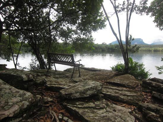 Jungle Rudy's Ucaima Camp: Landscape