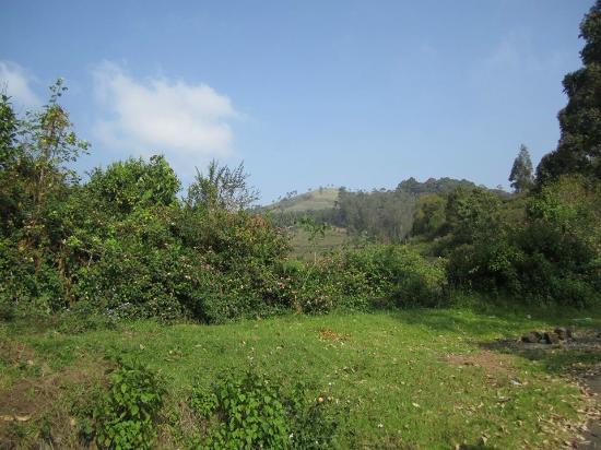 view form perumal peak