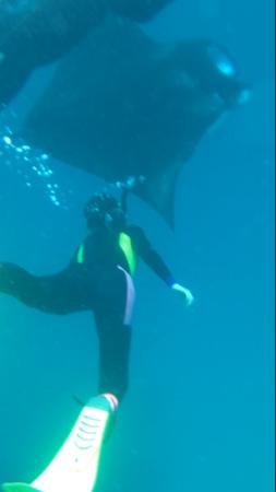 TGI Amilla Fushi: Nadar con MANTA