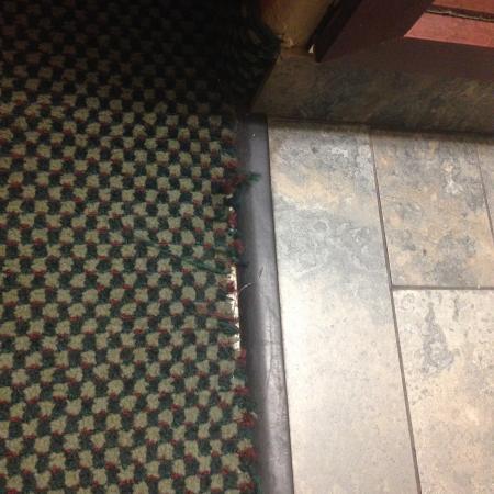 Quality Inn San Diego Miramar: carpet