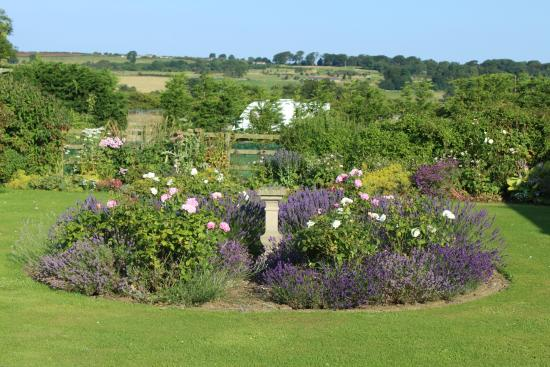 Redfoot Lea Bed and Breakfast : Garden View