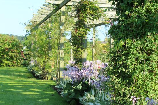 Redfoot Lea Bed and Breakfast : Pergola