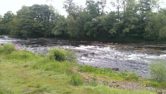 Sleningford Watermill Caravan & Camping Park
