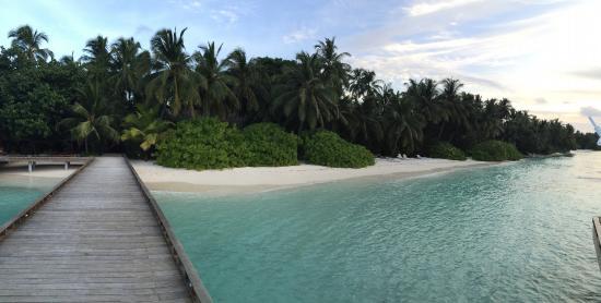 Kuramathi: Island from jetty