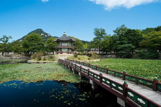 Top Korea Tour - Private Day Tours