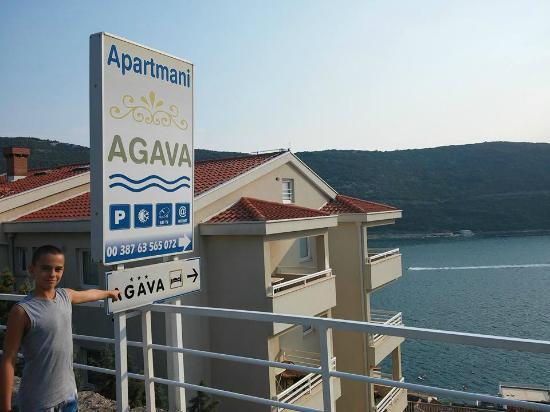 Apartments Agava: Hotel Agava