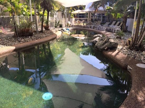 Tropical Nites: pool