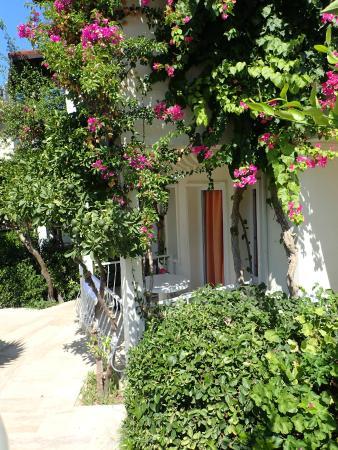 Summer Garden Apart Hotel: veranda