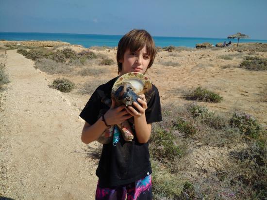 Lagon Bleu Village: Danger for children: charred metal and rotting food
