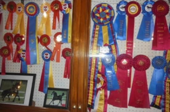 Townshend, VT: Awards are on display in the stables