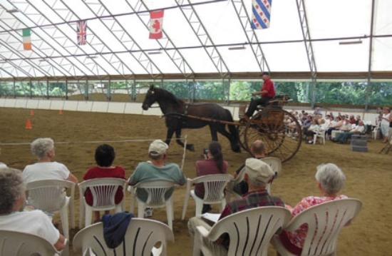 Townshend, VT: The show arena is comfortable and it's easy to see the action