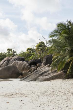 Praslin, Seychellen: Anse Lazio