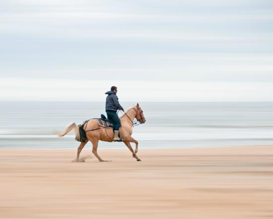 Virginia Beach Horseback Riding On The Is A Favorite Fall Pasttime