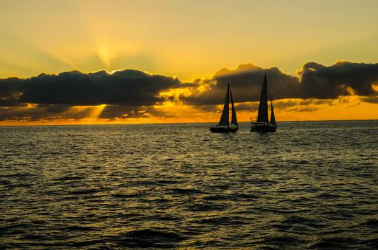 Star of Honolulu - Dinner and Whale Watch Cruises: beautiful sunset from the cruise
