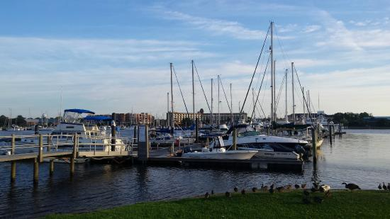 BridgePointe Hotel And Marina: View from the marina