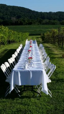 "Finesville, NJ: Table setting at ""Dinner in the Vines"""