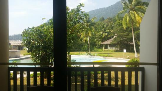 Damai Puri Resort & Spa: view from room (kids pool and forest santobang)