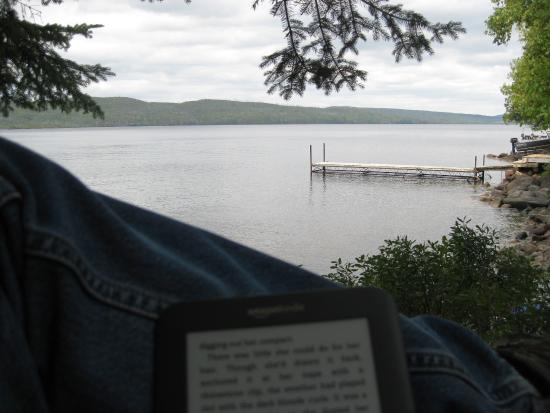 Heston's Lodge: Heston Lodge -  Kindle point at Birch