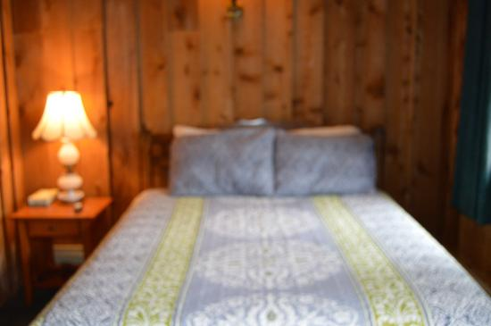 The Viking Lodge and Ski Shop: Double Bed