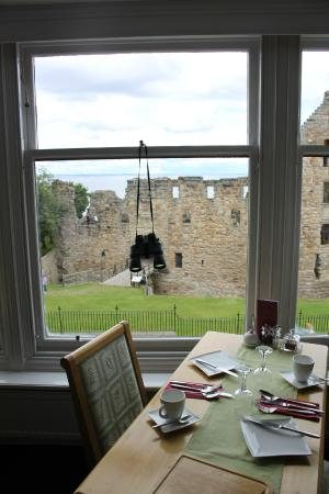 Castlemount Bed and Breakfast : including with Binoculars.  Can't beat that!