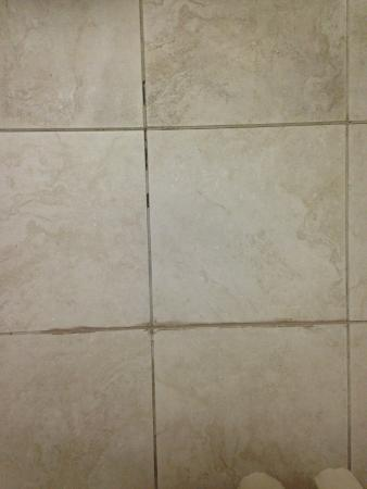 Doubletree Hotel Atlanta/Alpharetta-Windward: Tile grout coming out, sloppy repair around.