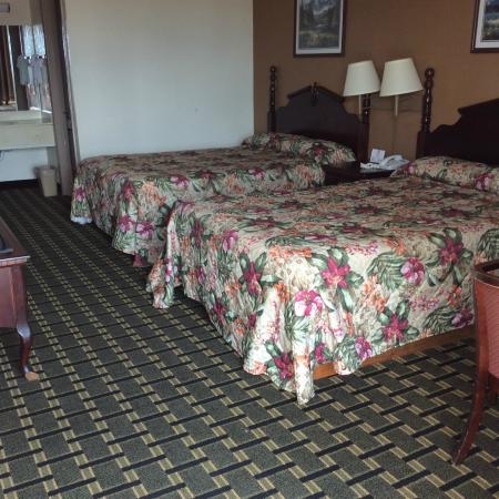 Americas Best Value Inn Nashville North / Goodlettsville