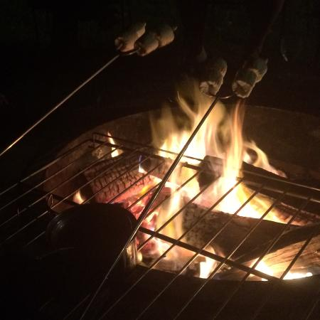 Sugar Pine Lodge: Fire pit