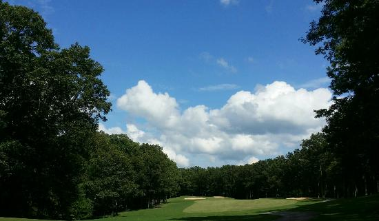 The Inn at Fall Creek Falls State Park: Great golf course!