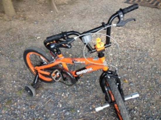 Comfort Inn Roanoke Airport: Chuck the Duck on a bike ride