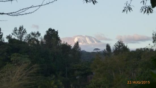 Kiboko Lodge: Mount Kilimanjaro in the distance