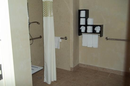 Hampton Inn & Suites Dallas-Arlington North-Entertainment District : Roll-in Shower