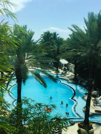 Raleigh Hotel Pool Miami Beach