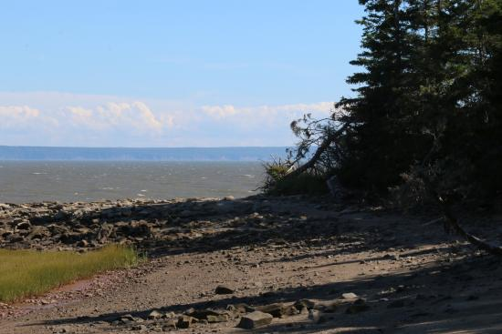 New Horton, Kanada: Nature walk across the road from cottages