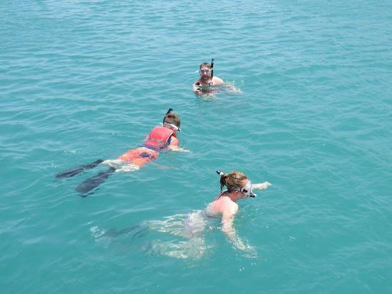 Κόλπος Simpson (Λιμνοθάλασσα), Άγιος Μαρτίνος: fun times