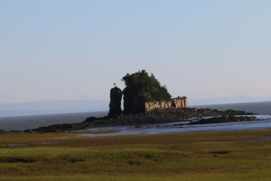 New Horton, Kanada: Island view on the hike