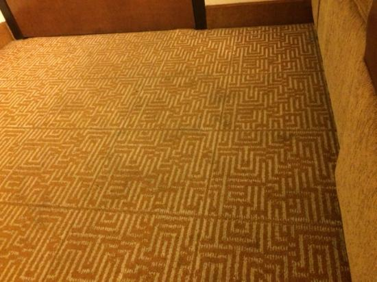 Hyatt Place Nashville/Franklin/Cool Springs: carpet in the room. must wear shoes at all times