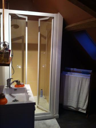 Le Presbytere: La salle de douche